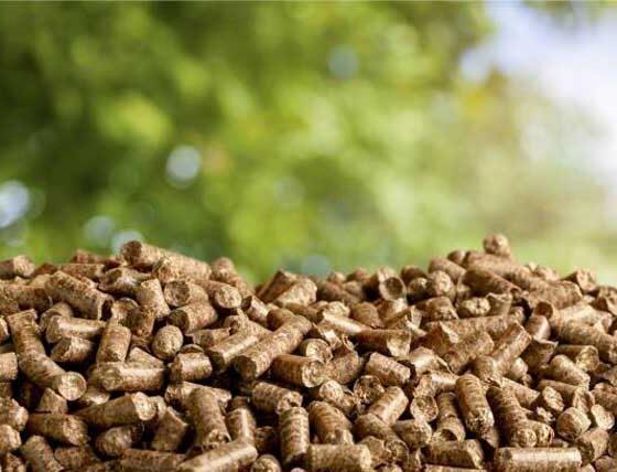 Ekologiczny pellet