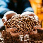 Ogrzewanie pelletem – korzyści